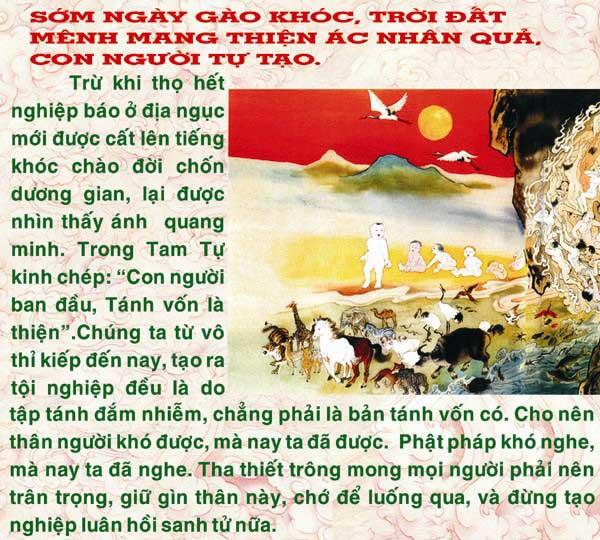 Dia-nguc-thap-vuong-vo-luong-cong-duc.com-dn82