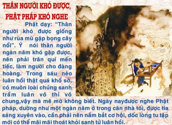 Dia-nguc-thap-vuong-vo-luong-cong-duc.com-dn84